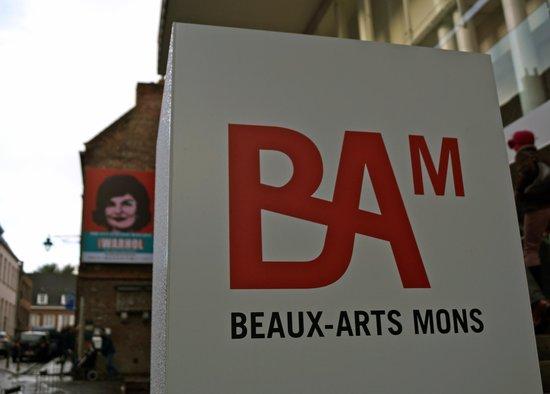 Museum of Fine Arts (Musee des Beaux-Arts): Entrée du musée