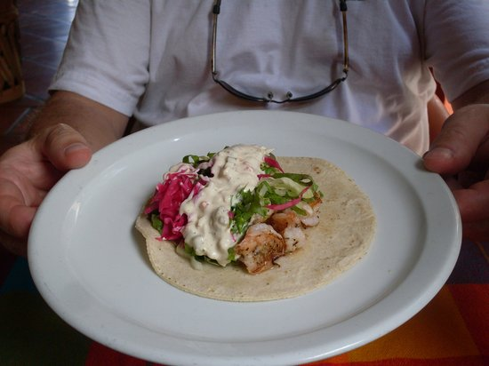 Teo Restaurant Bar And Grill : Awesome Shrimp Taco