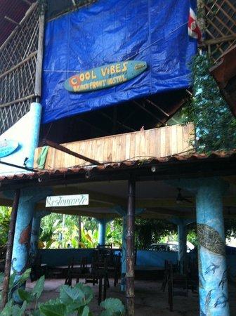 Cool Vibes Beach Hostel : L'auberge