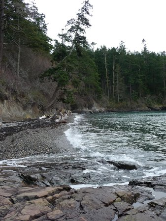Hollyhock Lifelong Learning Centre: Beaches in BC Canada