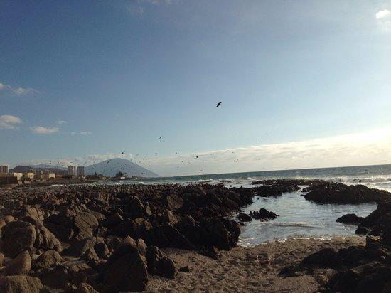 NH Antofagasta: Vista do pacífico