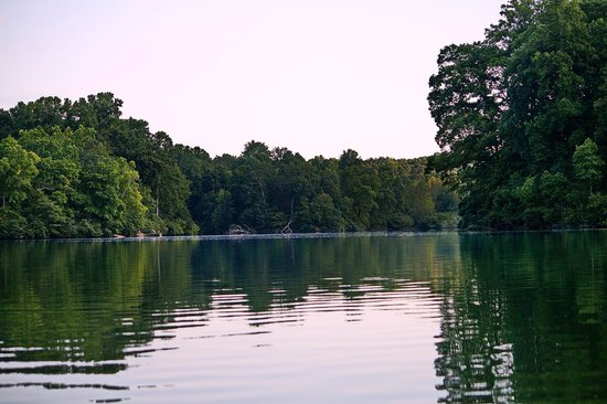Bells (TN) United States  city photo : lake Picture of Montgomery Bell State Park, Burns TripAdvisor