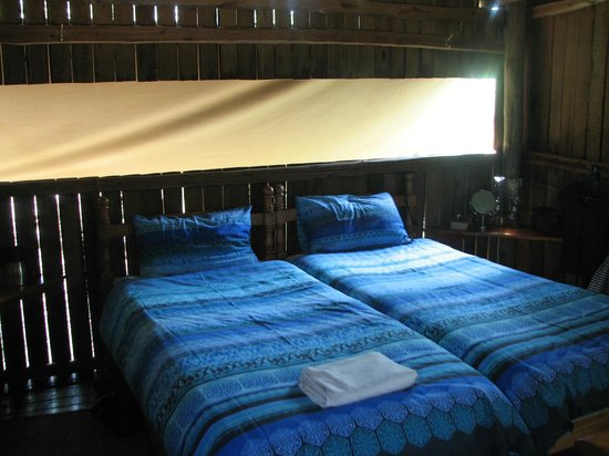 Mosetlha Bush Camp & Eco Lodge : Room