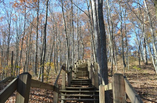 Brown County State Park : Sendero