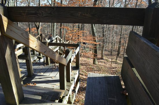Brown County State Park : Escalinata