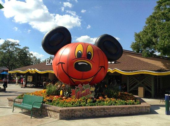 Disney Springs: Halloween