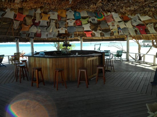 Coco Plum Island Resort: Bar