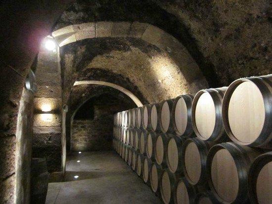 The underground tunnel where wine is stored picture of bodega casa primicia laguardia - Bodegas casa primicia ...