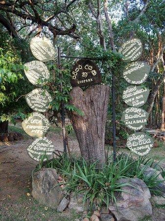 Heritance Kandalama: Eco Park signage