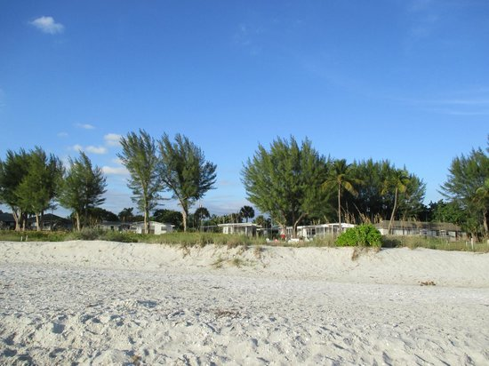 Mitchell's Sandcastles: View of cottages from beach