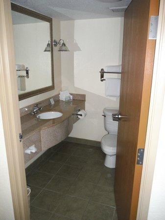 Sleep Inn & Suites Port Charlotte : Bathroom in my room.