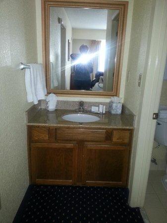 Residence Inn Chicago O'Hare: Sink and vanity outside bathroom
