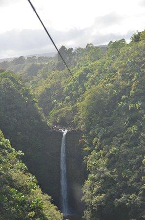 Skyline Eco Adventures - Akaka Falls: The Waterfall