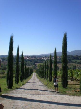 Borgo di Casagrande: Camino de entrada