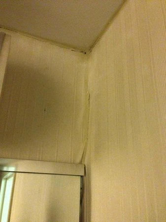 Fairfield Inn & Suites Harrisburg Hershey : Wall paper bubbling; water damage.