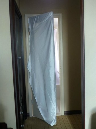 Crowne Plaza Detroit Downtown Riverfront Shower Curtain Used To Cover Bathroom Door