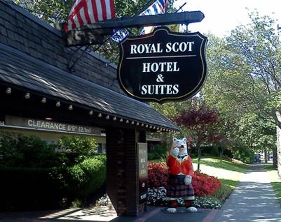 Royal Scot Hotel & Suites: As soon as I saw the bear, I new this was going to be special