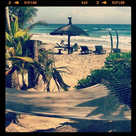Playa Mambo: morning