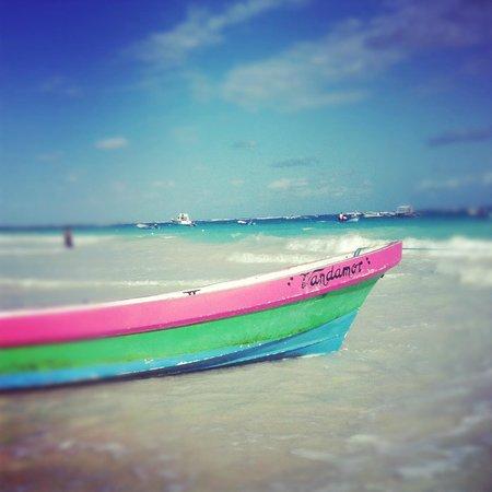 Playa Mambo: beach