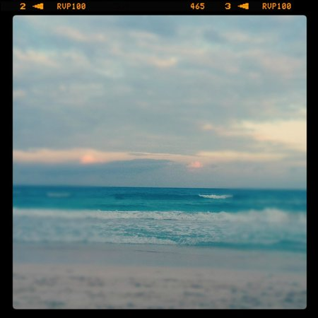Playa Mambo : beach