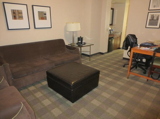Embassy Suites by Hilton Chicago Downtown Magnificent Mile: living room