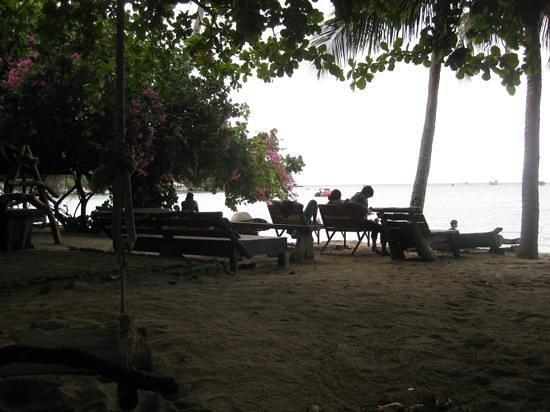 Big Fish Dive Resort: Aussicht auf den Strand