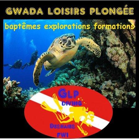 Calypso Plongée : glpdiving