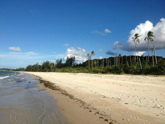 Bintan Lagoon Resort : Beach