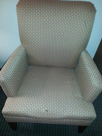 Comfort Suites Coralville: Chair in living area needs; material needs repair