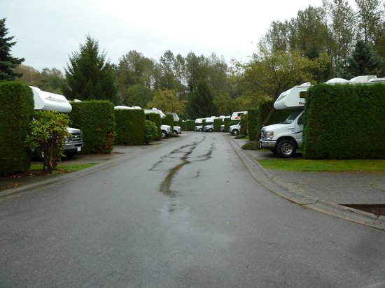 ‪‪Burnaby Cariboo RV Park‬: Nice & private‬