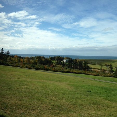 Whale Cove Summer Village: View from room