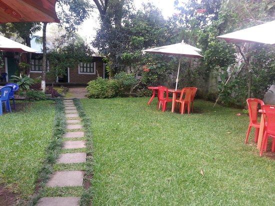 Hostel Restaurante Casa Jacaranda: Backyard