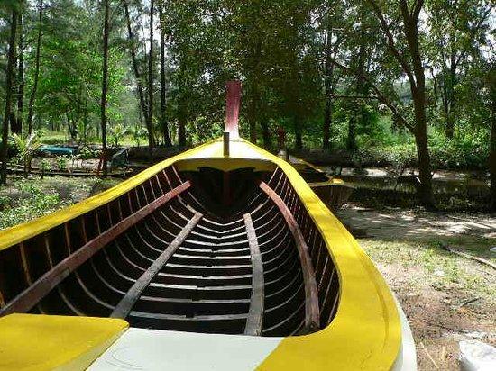 Cachet Resort Dewa Phuket - Nai Yang Beach: shiny new longtail