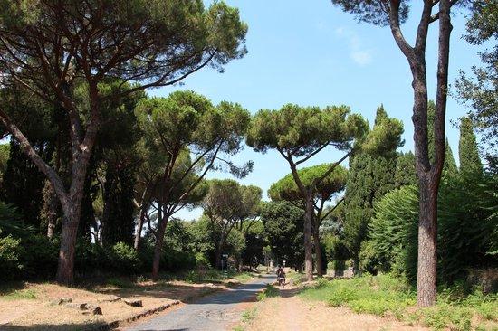 Parco Regionale dell'Appia Antica: Serenity