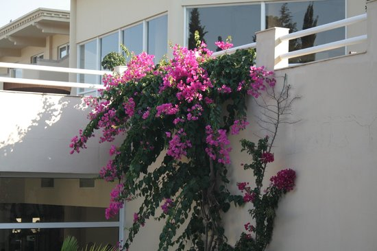 Lindos Royal Hotel : Переход между корпусами