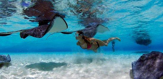 Tica Surf Bikinis : en el agua !!!