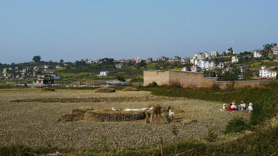 The Little House in the Ricefields: Vue de la maison