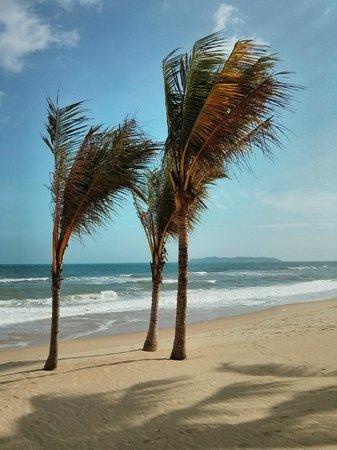The Westin Sanya Haitang Bay Resort: Beach