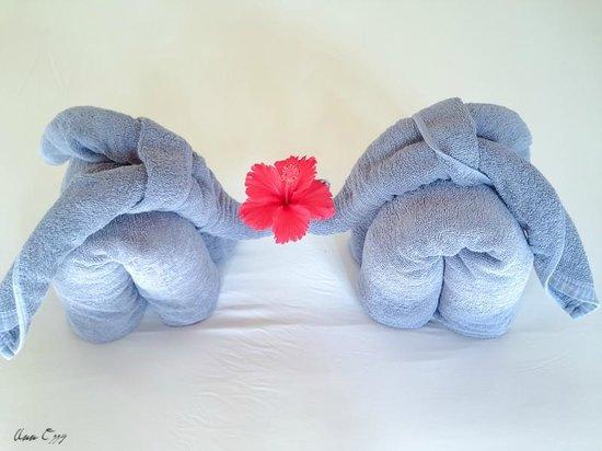 Alanta Villa : искусство сворачивания полотенец