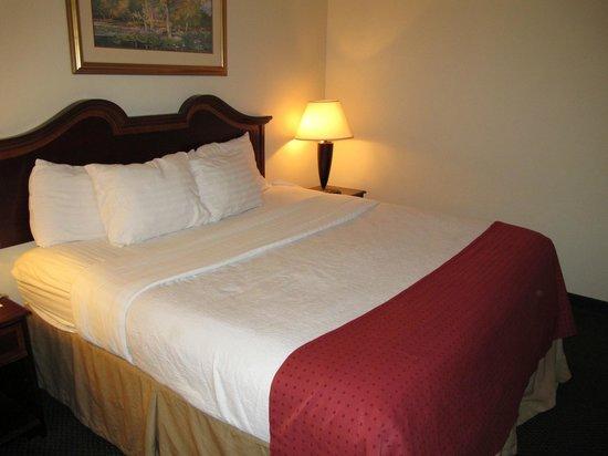 Clarion Inn & Suites: lit classique