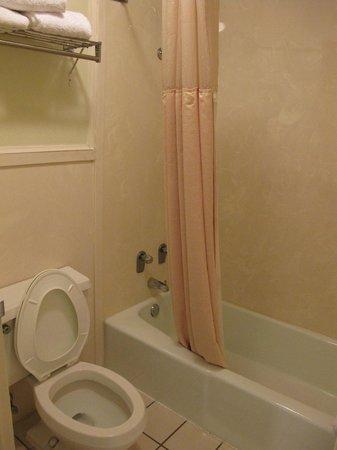 Clarion Inn & Suites : salle de bain standard