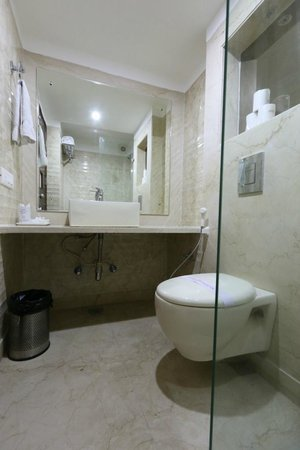 Hotel Le Roi : Guest Room Washroom with Shower