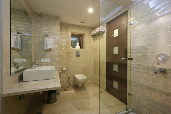 Hotel Le Roi: Guest Room Washroom with Shower