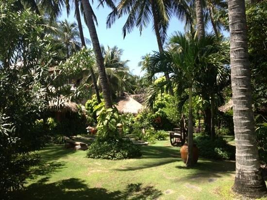 Bamboo Village Beach Resort & Spa: территория отеля