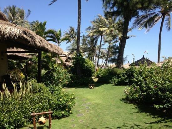 Bamboo Village Beach Resort & Spa : лужайка перед бунгало