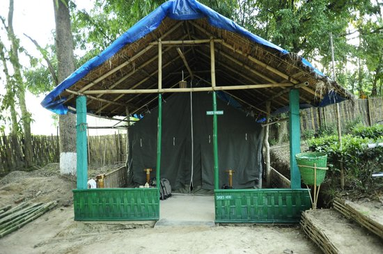 Nature Hunt Eco Camp, Kaziranga National Park: The tent we stayed in.