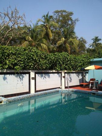 Willows Elite Resort: Pool