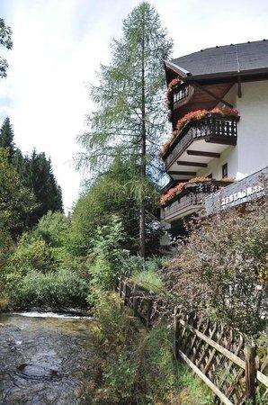 Hotel Trattlerhof: Rückansicht idyllisch gelegen