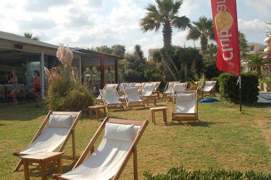 Rethymno Palace : Espace vert entre piscine et plage