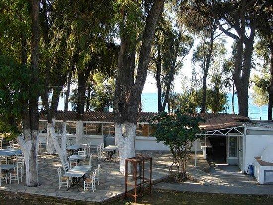 Park Beach Hotel: Таверня